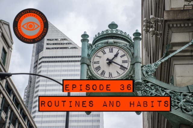 routine and habit in security